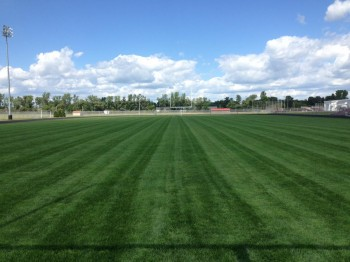 Athletic Field - Before the wear & tear of the season